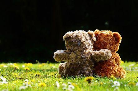 teddy-1361396__480-1.jpg