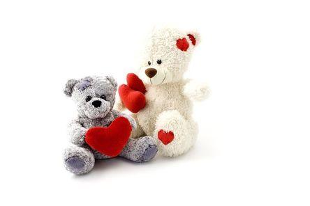 teddy-15323__480.jpg