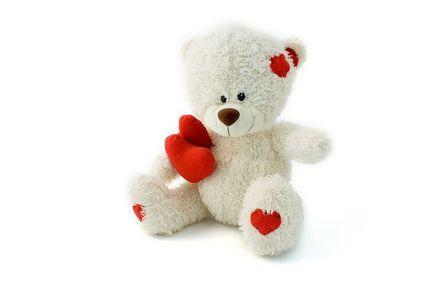 teddy-1955__480.jpg