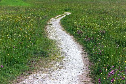 trail-352284__480.jpg