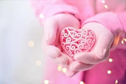 valentines-day-3934789__480~2.jpg