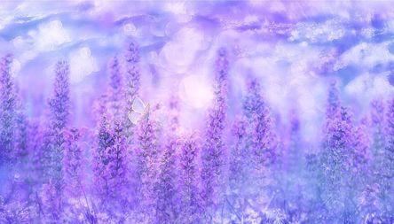violet-3054851__480.jpg