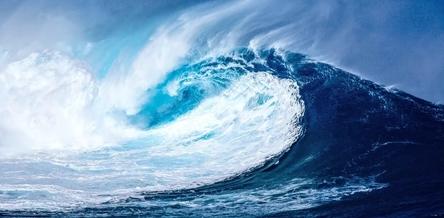 wave-1913559_1280~2.jpg