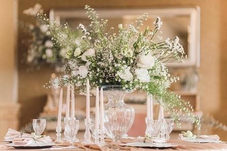wedding-photography-5582980__480~2.jpg