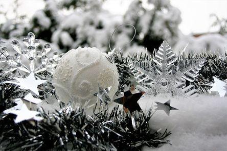 winter-3008975__480.jpg